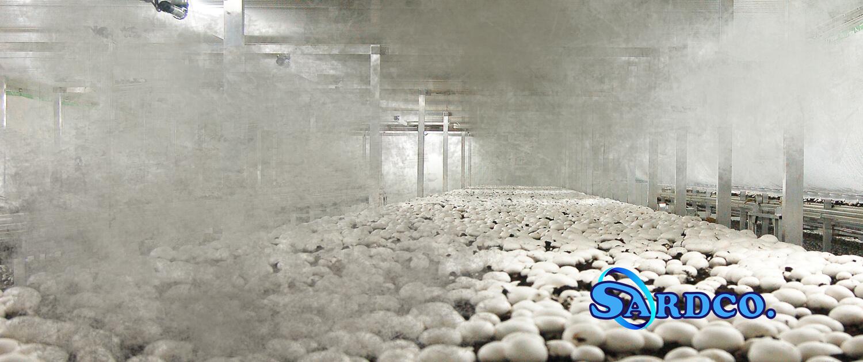 ساخت سردخانه قارچ